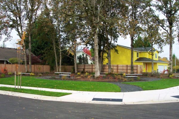"""""""Open space"""" we designed at Langwood Crossing Subdivision to save this grove of trees"""